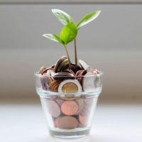 【10/24】「お金の育て方」[WEB講座]